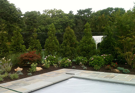 Backyard with brickwork and tall trees